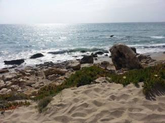 ZUMA BEACH IN MALIBU, CALIFORNIA FROM WISE OWL KIM
