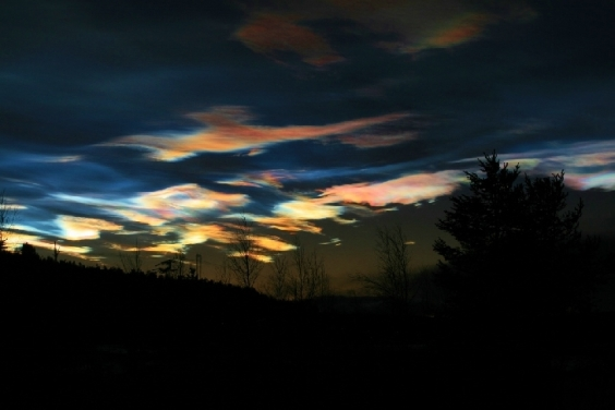 """""""CLOUDS LIKE WINGS"""" FROM WISE OWL CARO"""
