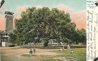 Children On A Swing In The Safety Of A Huge Oak Tree vintage