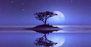 The Silvery Moon Shining Across A Beautiful Gem Of A Lake