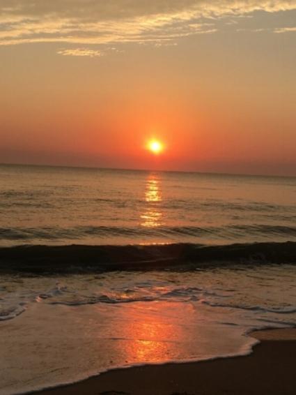 PHOTO TAKEN ON NOVEMBER 3, 2016, IN VIRGINIA BEACH, VIRGINIA BY WISE OWL MAKIKO