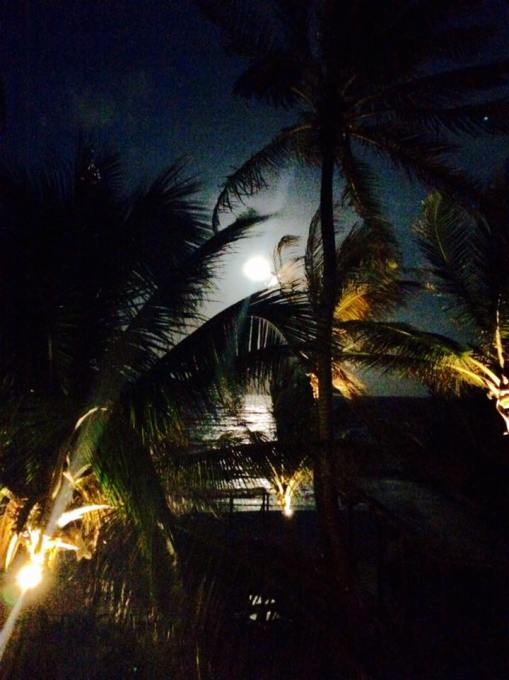Full moon by Brittney Rose from Facebook in Tulum, Mexico